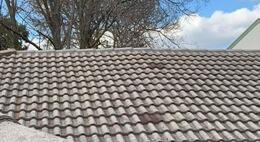 spray-roof-insulation.jpg